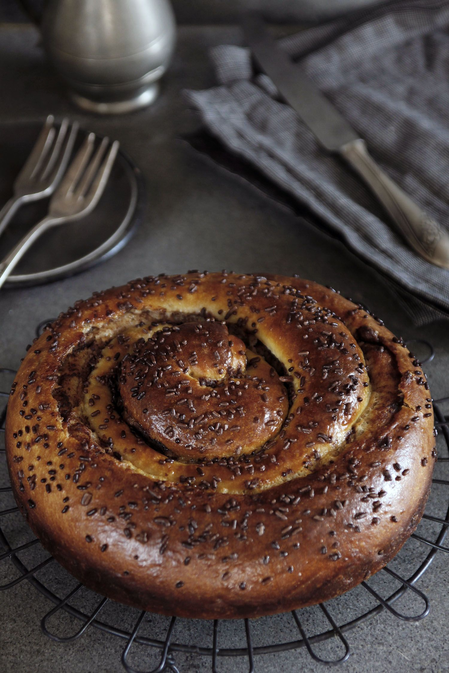 Spiral-Shaped Double Chocolate Babka